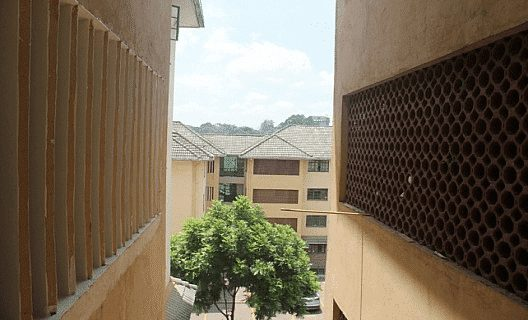 3 Bedroom Apartment In Lavington