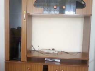 Modern Clean wall unit